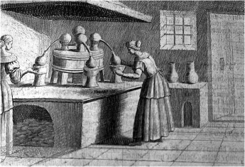 Wolf Helmhardt von Hohberg (1612–1688), Georgica Curiosa, @WikiCommons